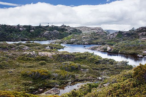 Mt Field_National_Park James Tarn wikimedia JJ Harrison